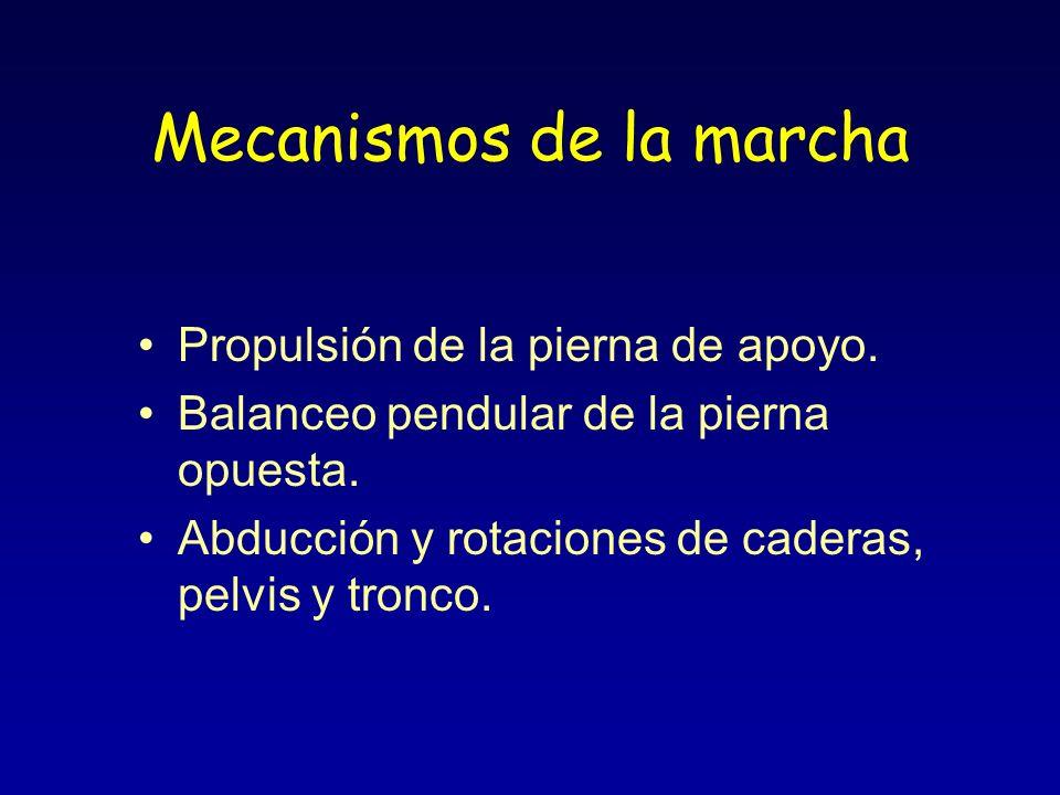 Mecanismos de la marcha