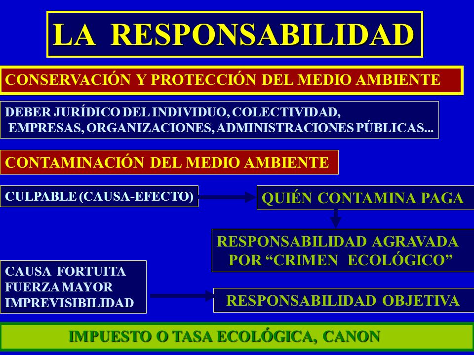 LA RESPONSABILIDAD CONSERVACIÓN Y PROTECCIÓN DEL MEDIO AMBIENTE