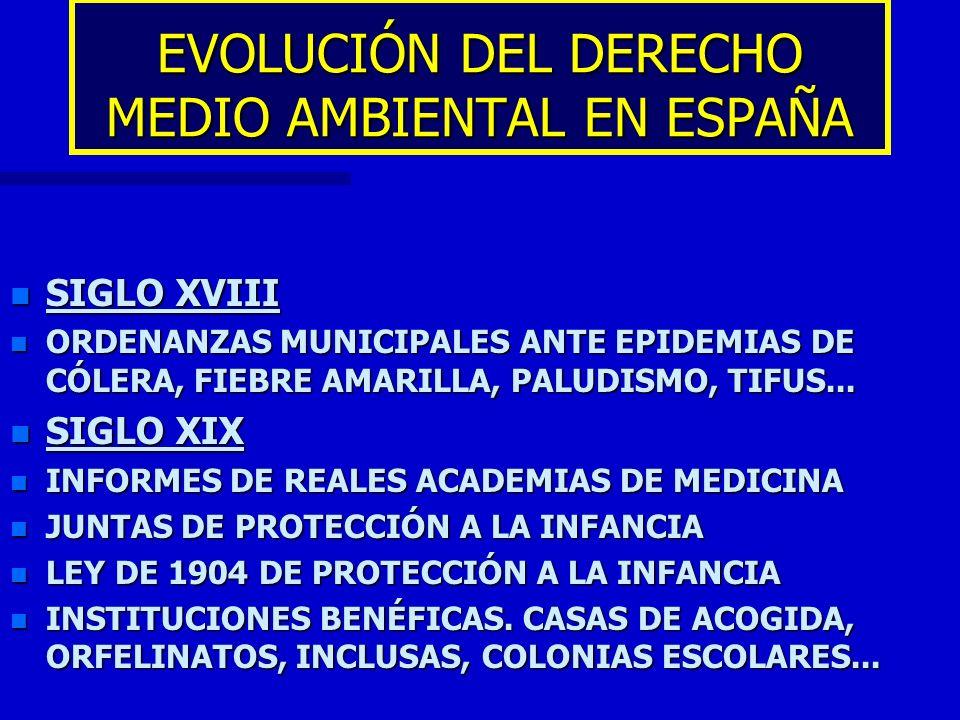 EVOLUCIÓN DEL DERECHO MEDIO AMBIENTAL EN ESPAÑA