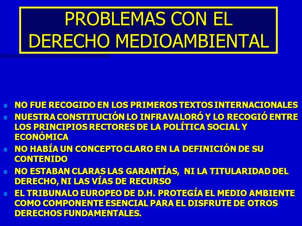 PROBLEMAS CON EL DERECHO MEDIOAMBIENTAL