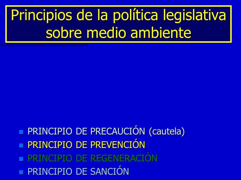 Principios de la política legislativa sobre medio ambiente