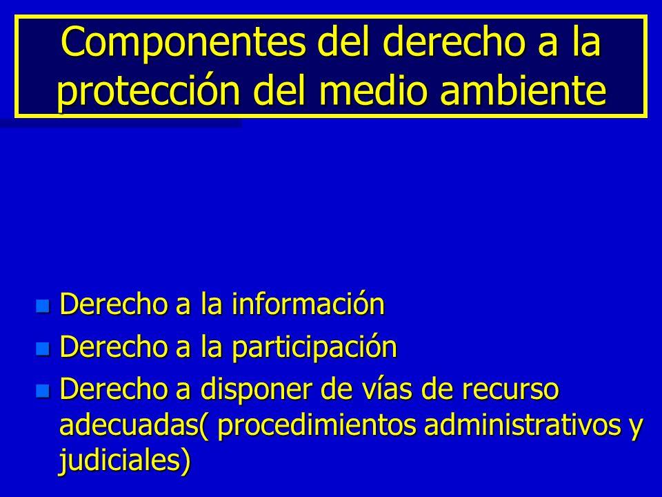 Componentes del derecho a la protección del medio ambiente