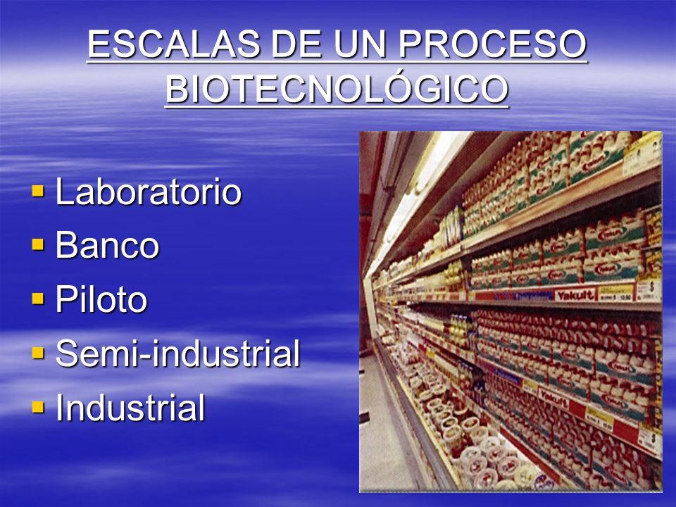 ESCALAS DE UN PROCESO BIOTECNOLÓGICO