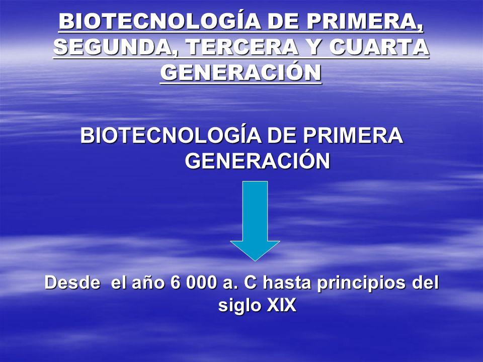 BIOTECNOLOGÍA DE PRIMERA, SEGUNDA, TERCERA Y CUARTA GENERACIÓN