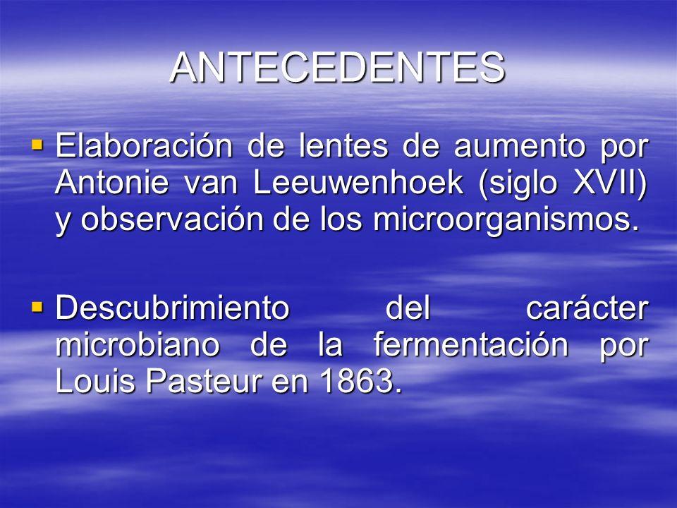 ANTECEDENTES Elaboración de lentes de aumento por Antonie van Leeuwenhoek (siglo XVII) y observación de los microorganismos.