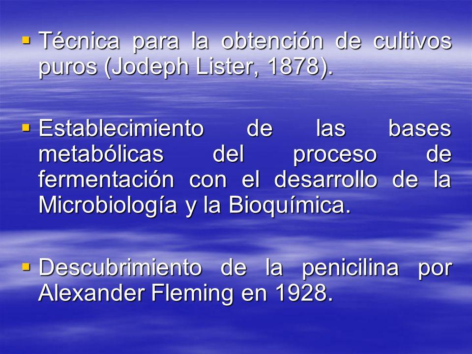 Técnica para la obtención de cultivos puros (Jodeph Lister, 1878).