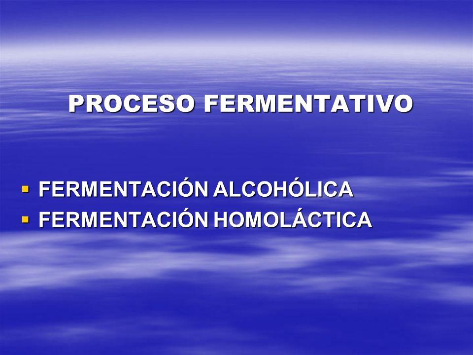 PROCESO FERMENTATIVO FERMENTACIÓN ALCOHÓLICA FERMENTACIÓN HOMOLÁCTICA