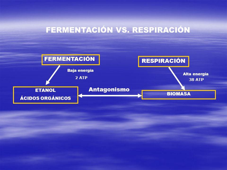 FERMENTACIÓN VS. RESPIRACIÓN