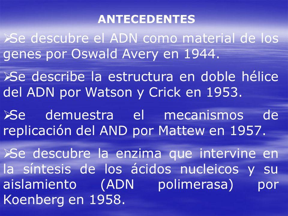 Se demuestra el mecanismos de replicación del AND por Mattew en 1957.