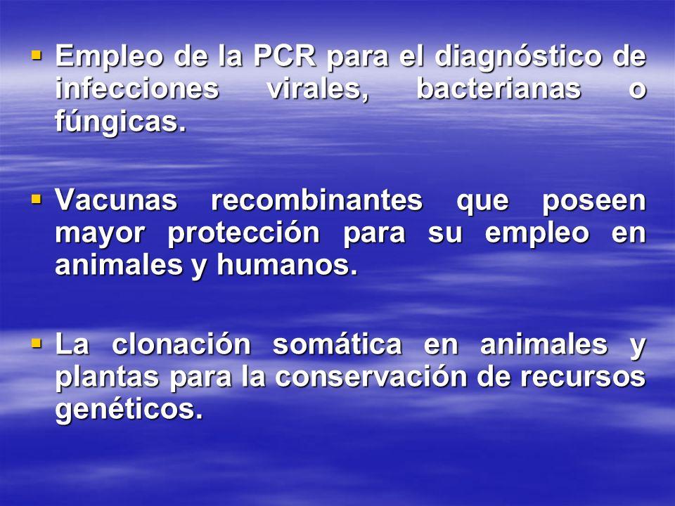 Empleo de la PCR para el diagnóstico de infecciones virales, bacterianas o fúngicas.