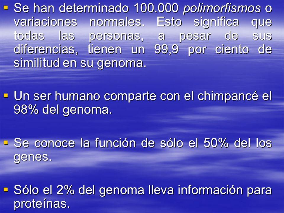 Se han determinado 100. 000 polimorfismos o variaciones normales