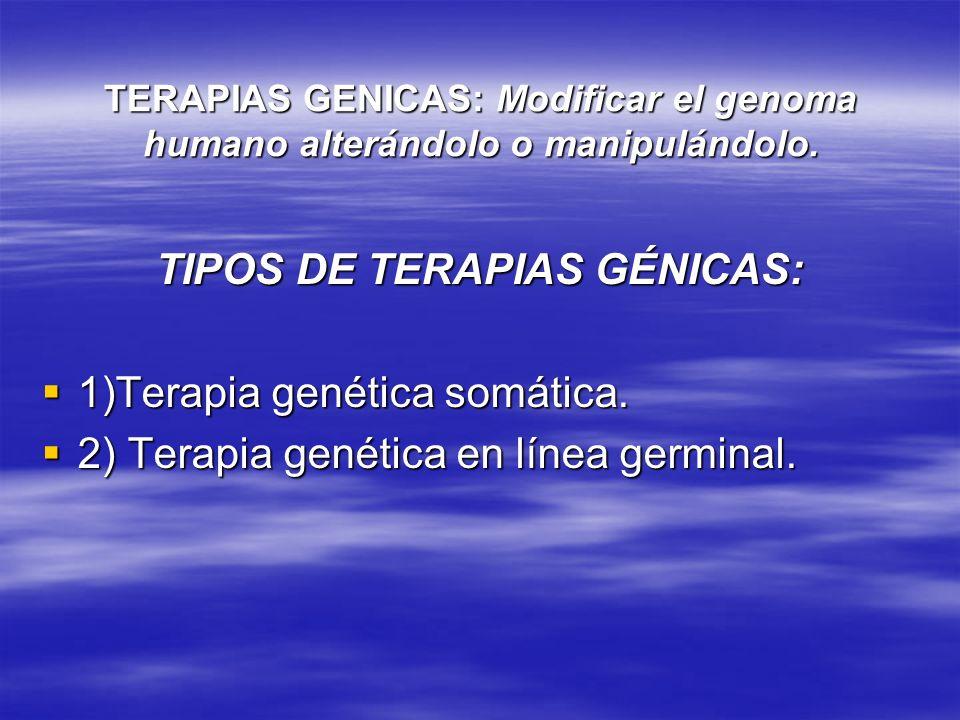 TIPOS DE TERAPIAS GÉNICAS: