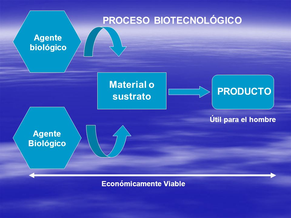 PROCESO BIOTECNOLÓGICO
