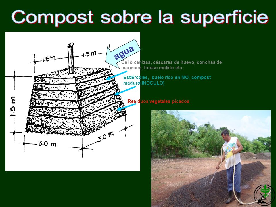 Compost sobre la superficie