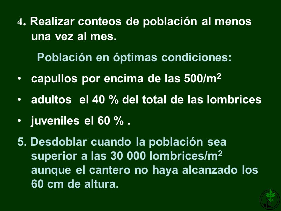 Población en óptimas condiciones: capullos por encima de las 500/m2