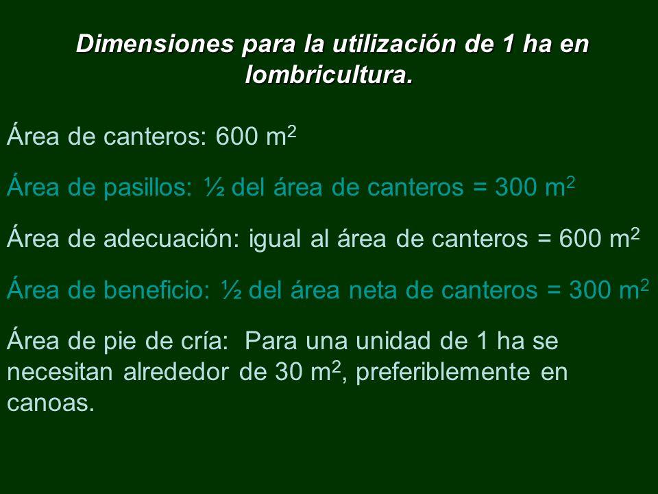 Dimensiones para la utilización de 1 ha en lombricultura.