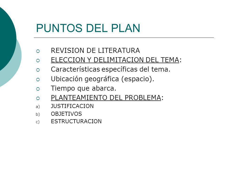 PUNTOS DEL PLAN REVISION DE LITERATURA