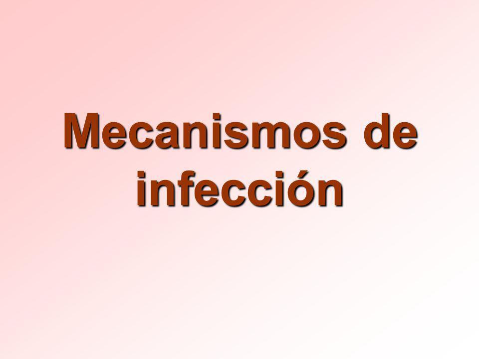 Mecanismos de infección