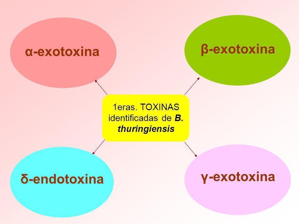 1eras. TOXINAS identificadas de B. thuringiensis