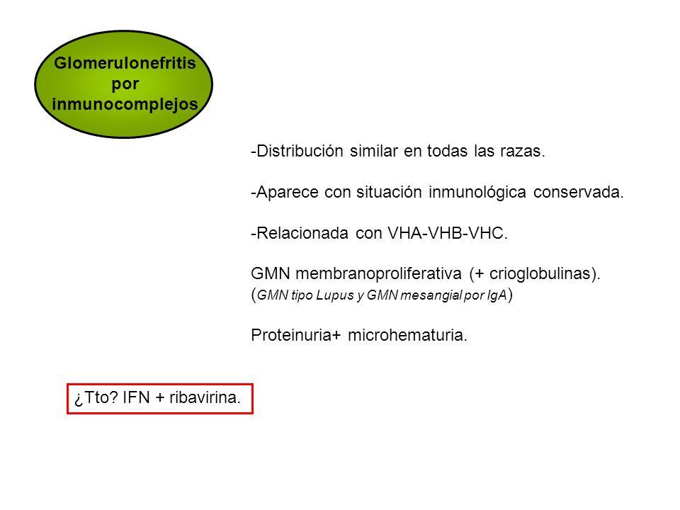 Glomerulonefritis por inmunocomplejos