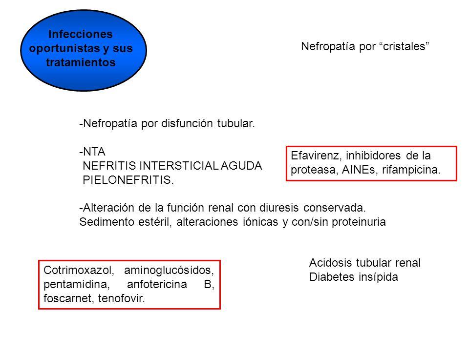 Infecciones oportunistas y sus tratamientos