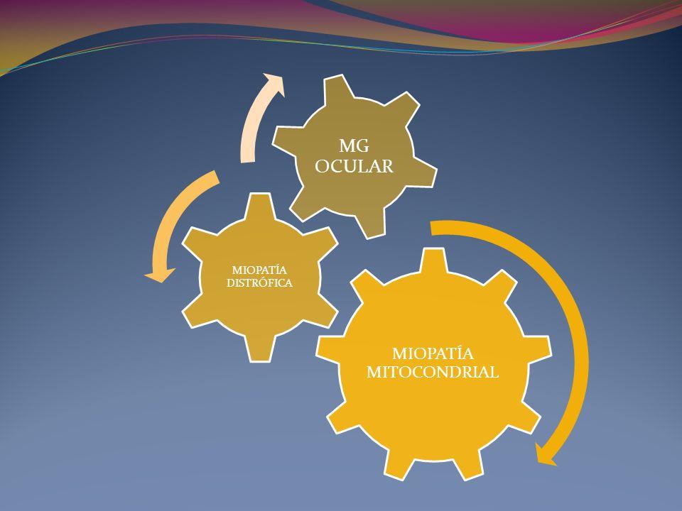 MIOPATÍA MITOCONDRIAL