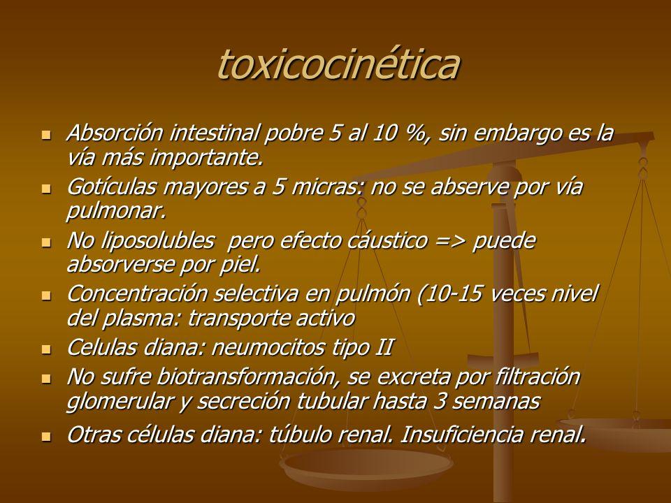toxicocinética Absorción intestinal pobre 5 al 10 %, sin embargo es la vía más importante.