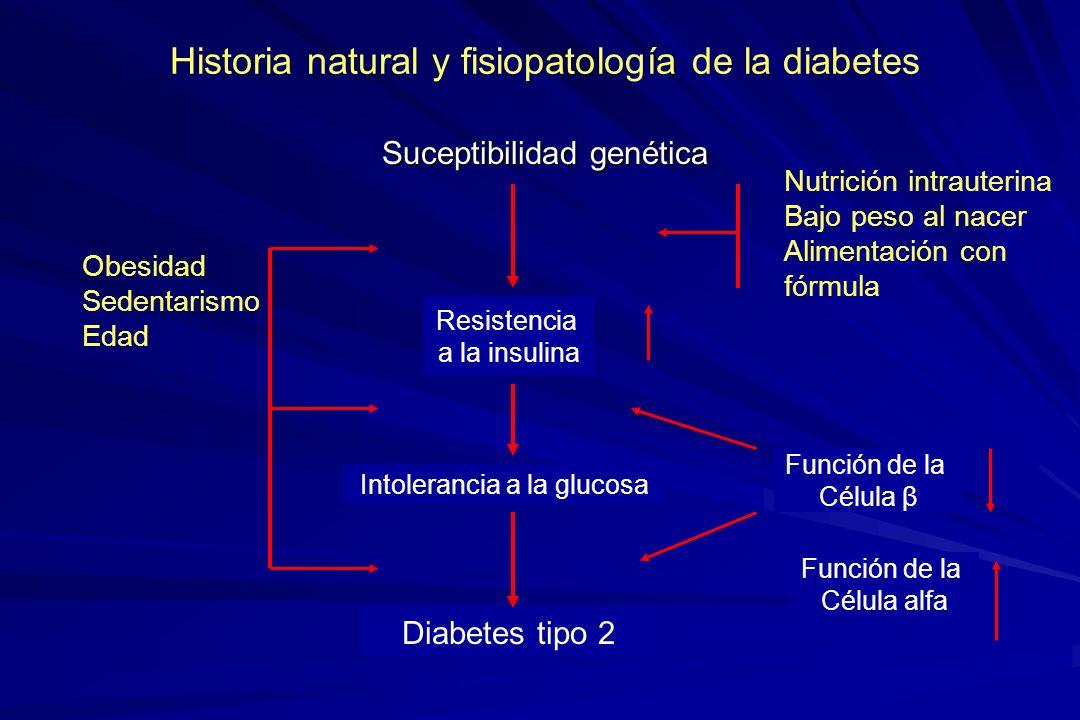 Historia natural y fisiopatología de la diabetes