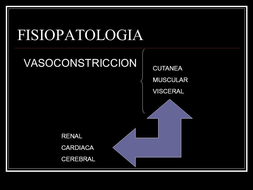 FISIOPATOLOGIA VASOCONSTRICCION CUTANEA MUSCULAR VISCERAL RENAL