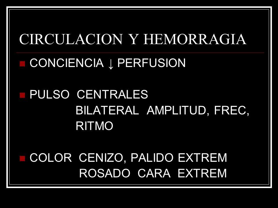 CIRCULACION Y HEMORRAGIA