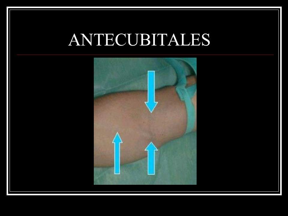 ANTECUBITALES