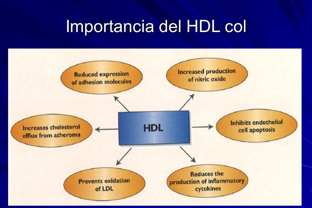 Importancia del HDL col
