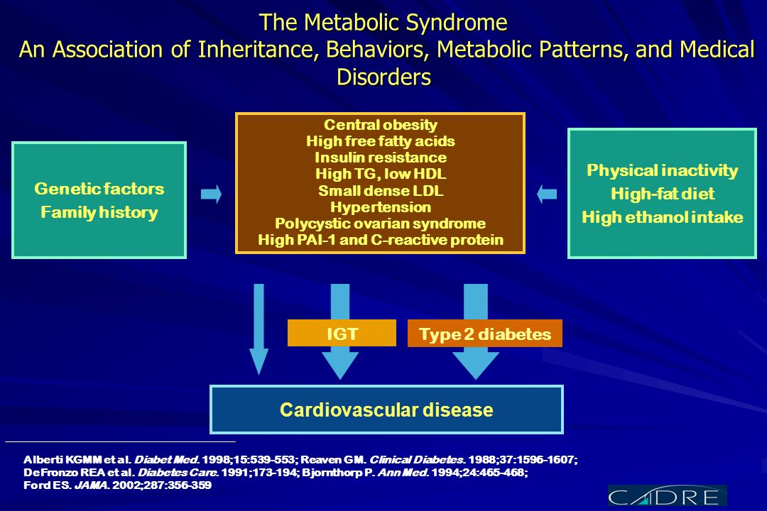 The Metabolic Syndrome An Association of Inheritance, Behaviors, Metabolic Patterns, and Medical Disorders