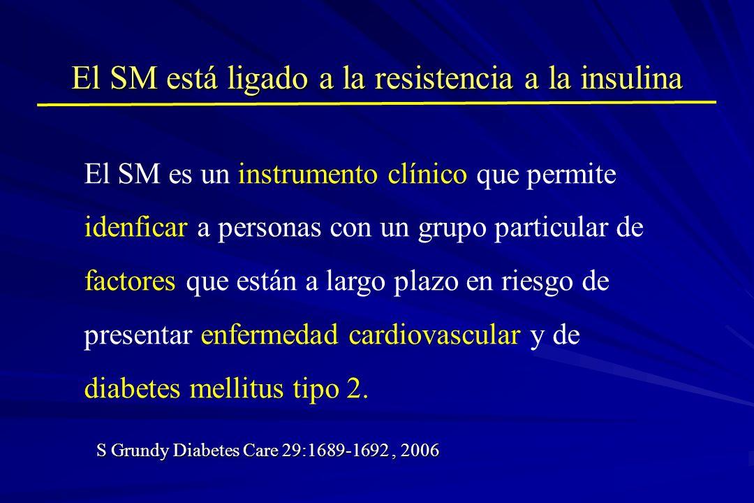 El SM está ligado a la resistencia a la insulina