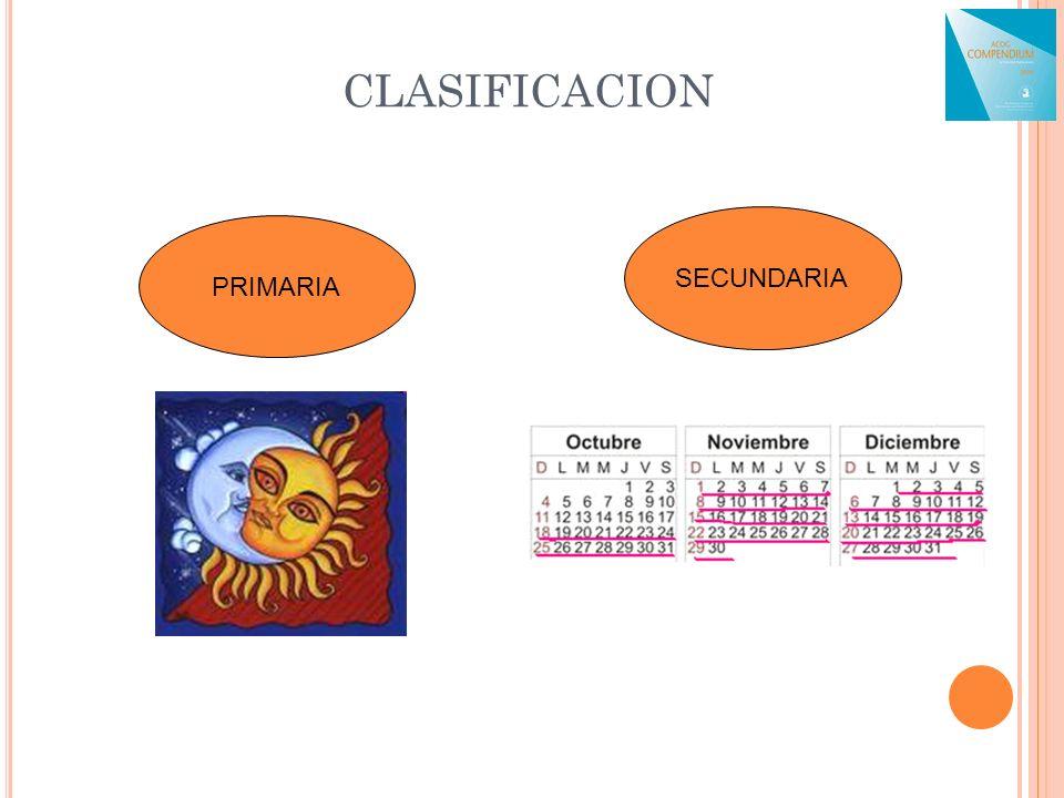 CLASIFICACION SECUNDARIA PRIMARIA