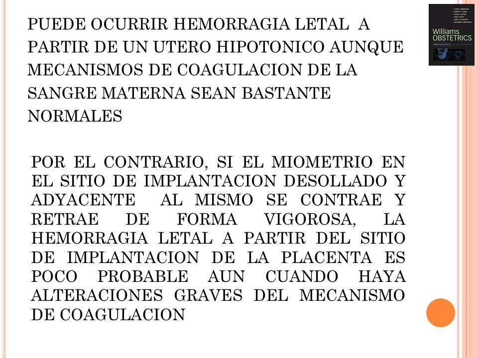 PUEDE OCURRIR HEMORRAGIA LETAL A