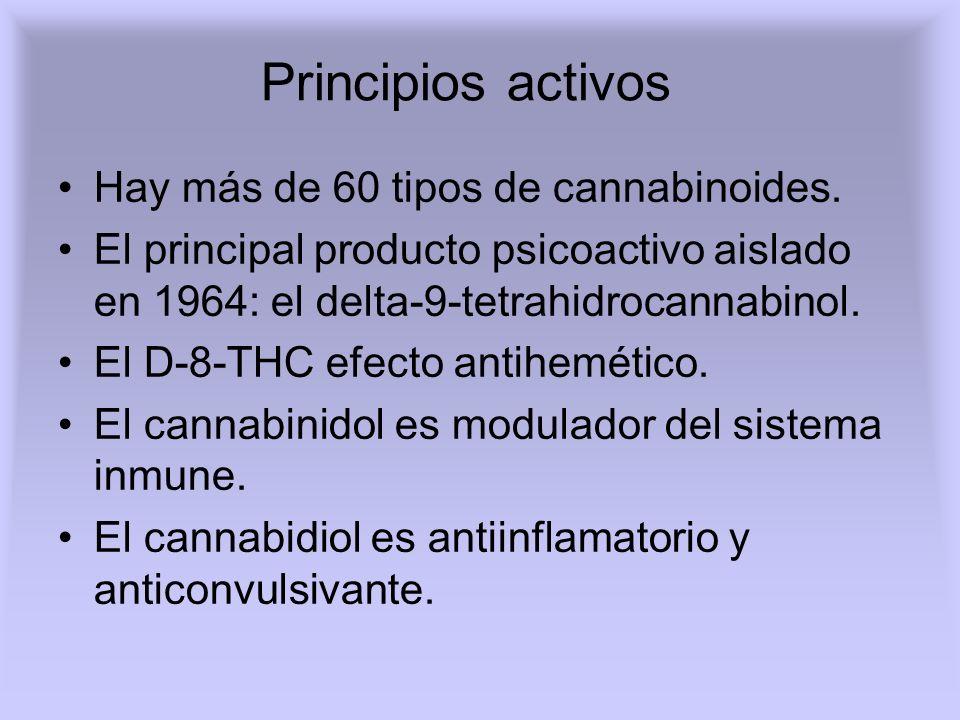 Principios activos Hay más de 60 tipos de cannabinoides.
