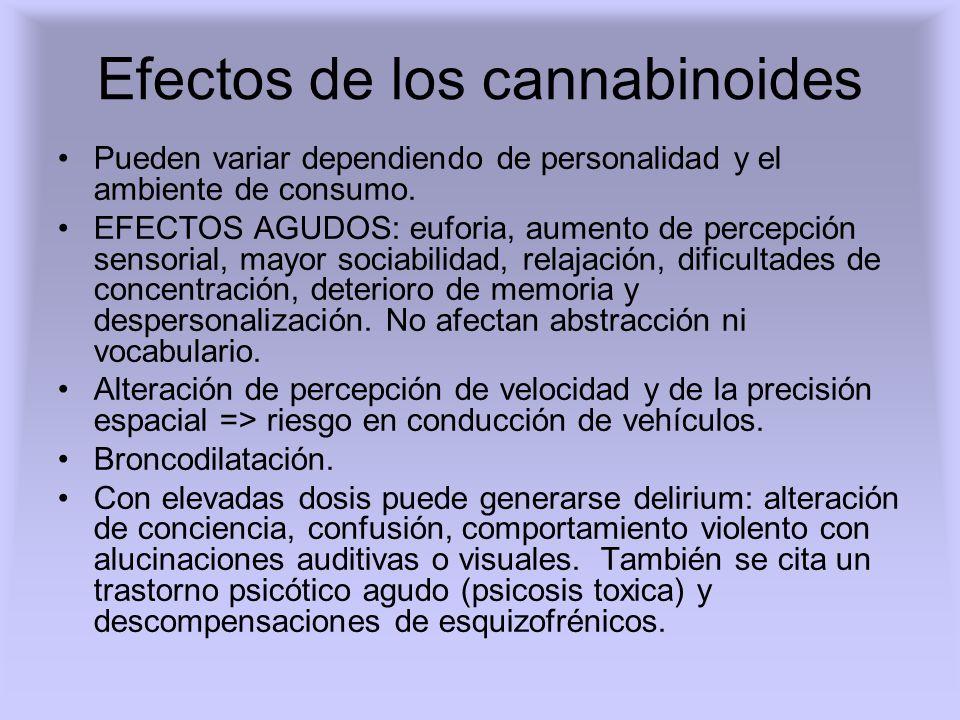 Efectos de los cannabinoides