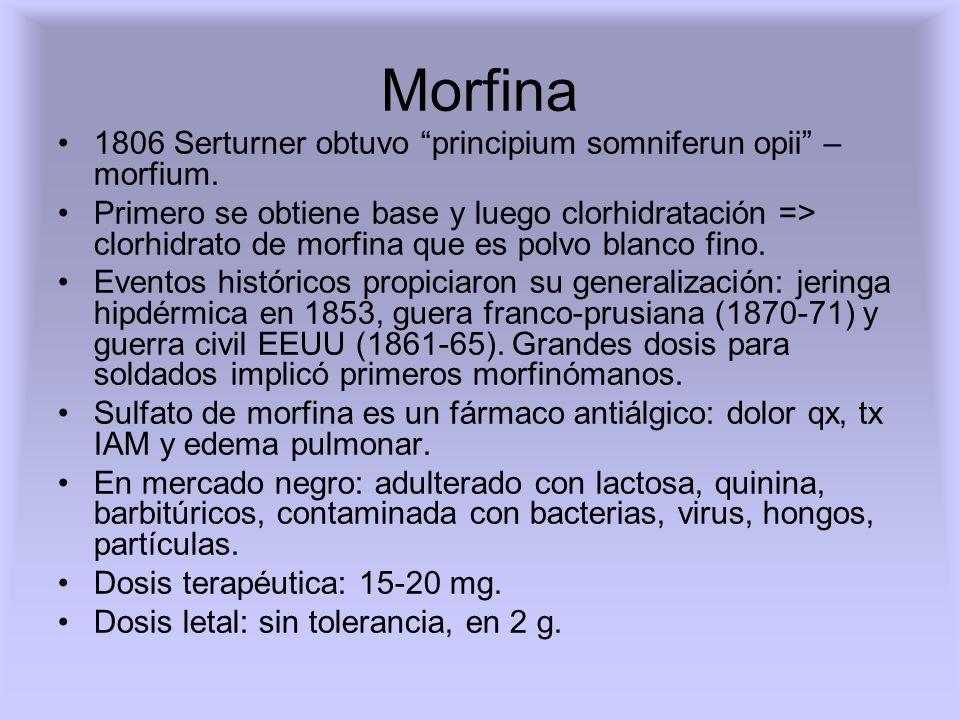 Morfina 1806 Serturner obtuvo principium somniferun opii – morfium.