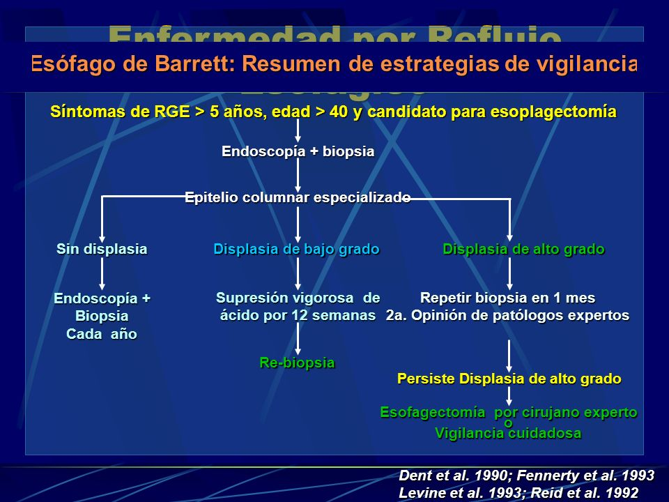 Esófago de Barrett: Resumen de estrategias de vigilancia