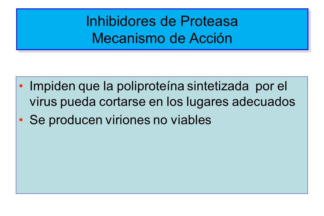 Inhibidores de Proteasa Mecanismo de Acción
