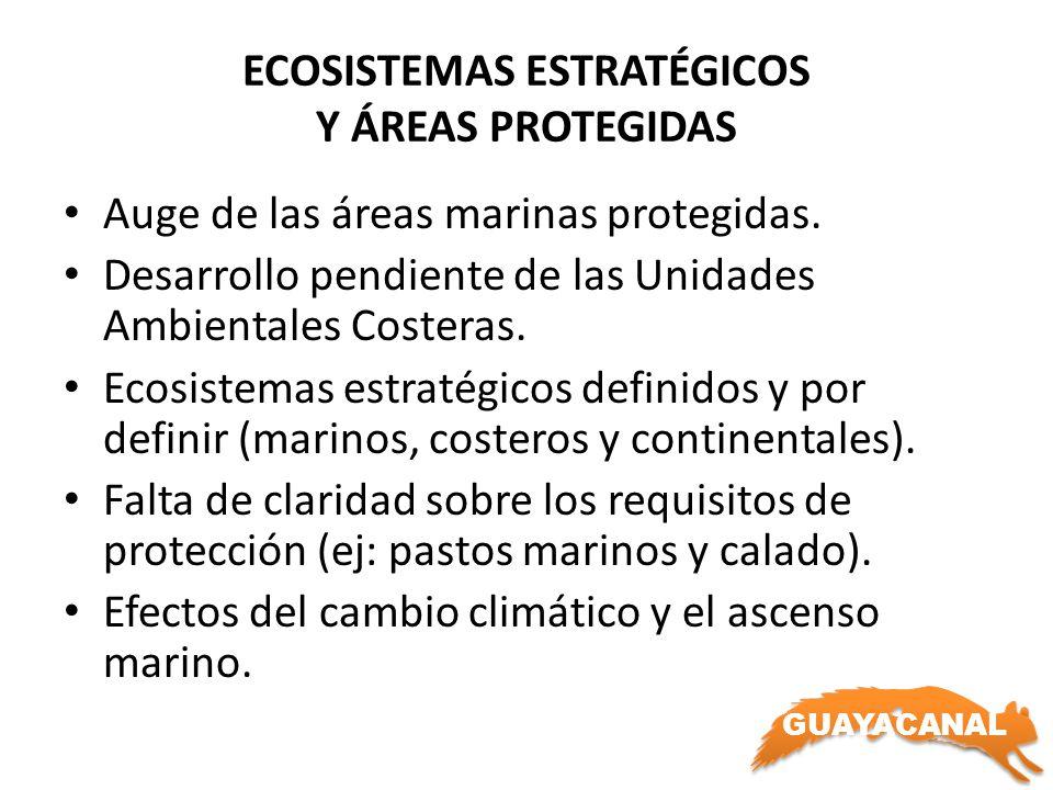 ECOSISTEMAS ESTRATÉGICOS Y ÁREAS PROTEGIDAS