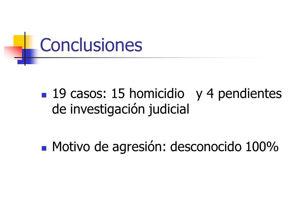 Conclusiones 19 casos: 15 homicidio y 4 pendientes de investigación judicial.