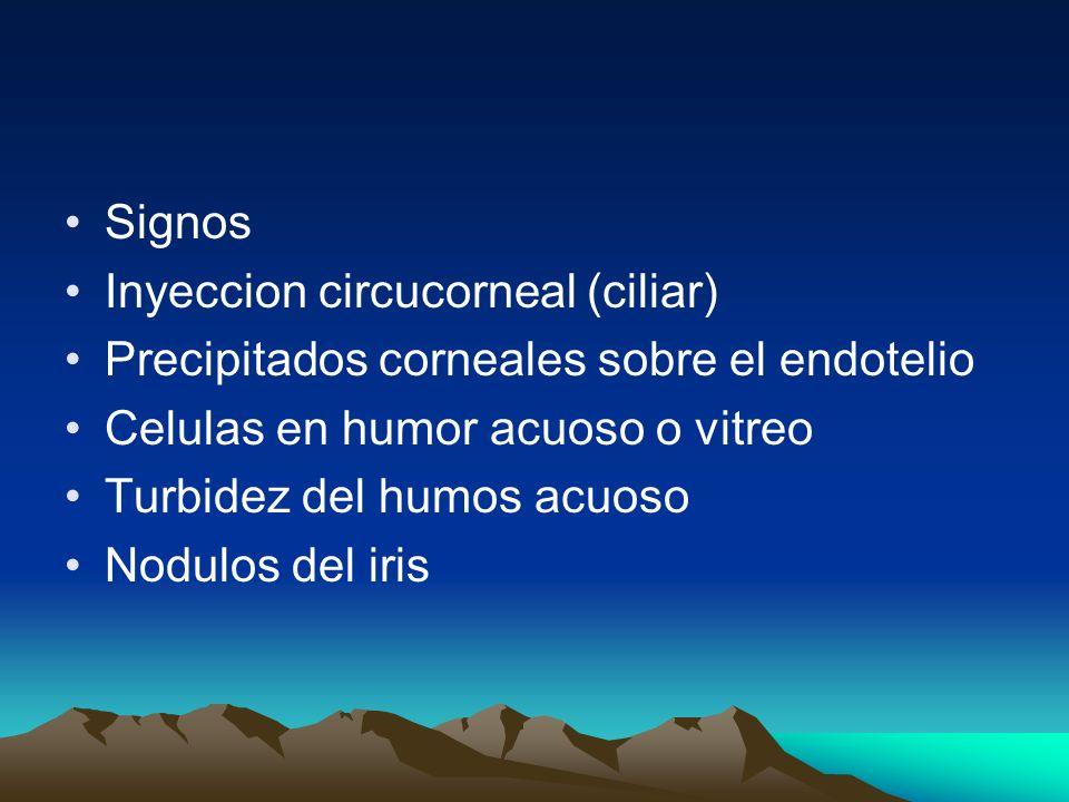 Signos Inyeccion circucorneal (ciliar) Precipitados corneales sobre el endotelio. Celulas en humor acuoso o vitreo.