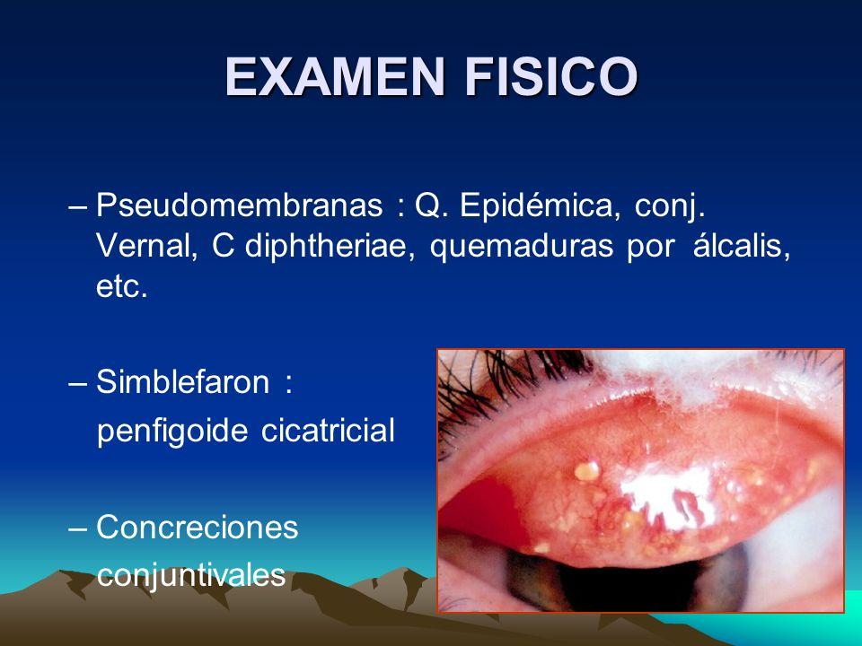 EXAMEN FISICOPseudomembranas : Q. Epidémica, conj. Vernal, C diphtheriae, quemaduras por álcalis, etc.
