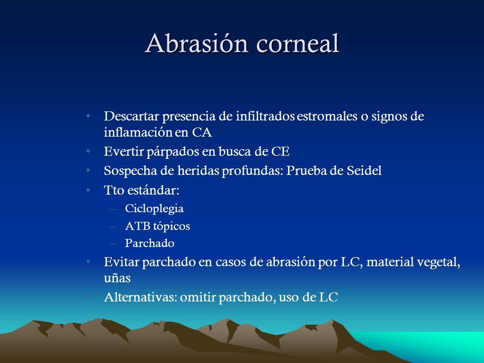 Abrasión cornealDescartar presencia de infiltrados estromales o signos de inflamación en CA. Evertir párpados en busca de CE.