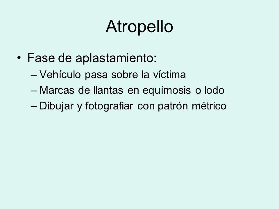 Atropello Fase de aplastamiento: Vehículo pasa sobre la víctima