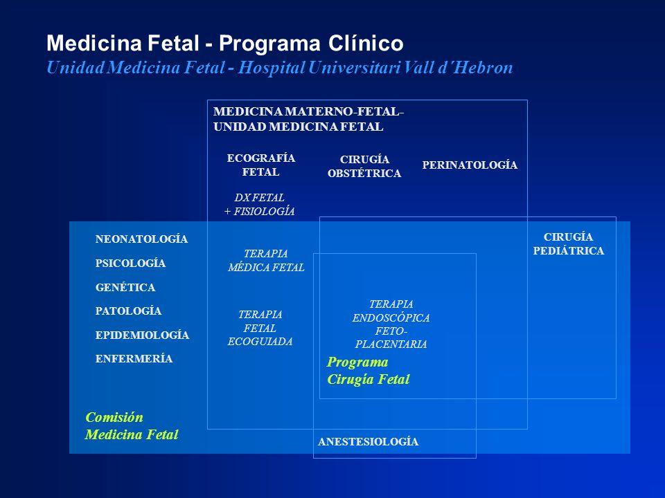Medicina Fetal - Programa Clínico