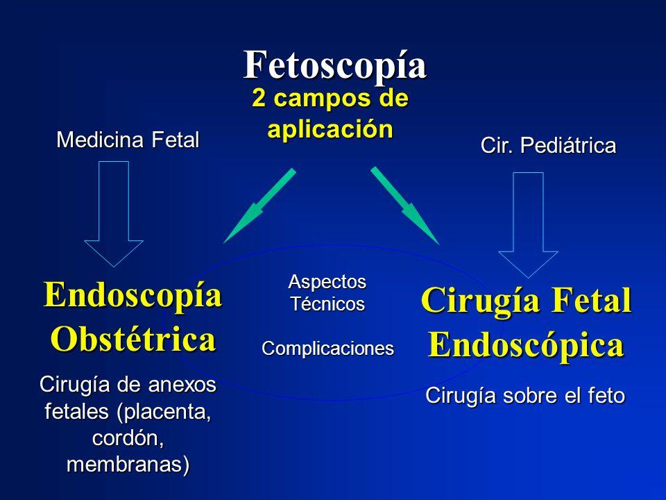 Endoscopía Obstétrica Cirugía Fetal Endoscópica
