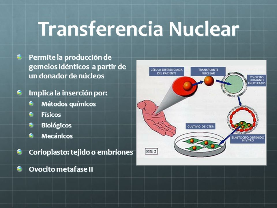 Transferencia Nuclear